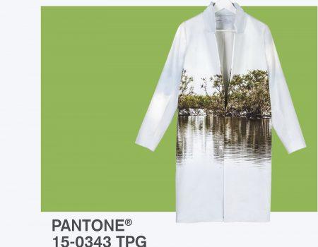 Greenery – Pantone macht 2017 grüner