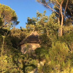 Eco-Resort Pine Beach