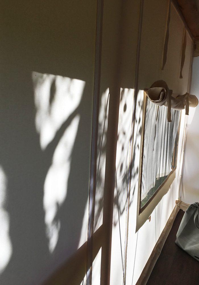 Schattenspiele auf der Zeltwand