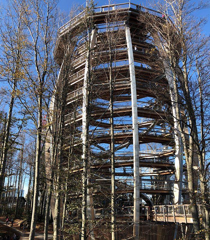 Immer wieder ein architektonisches Highlight: der Turm der Baumwipfelpfade